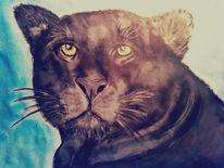 Wasserfarben, Bleistiftzeichnung, Tiere, Buntstiftzeichnung