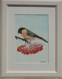 Vogel, Natur, Malerei, Tiere