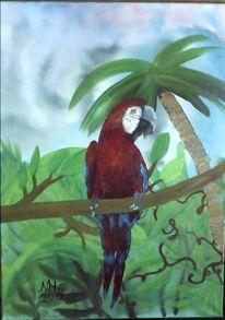 Papageitaucher, Tiere, Pflanzen, Urwald