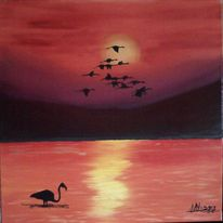 Tiere, Flamingo, Landschaft, Sonnenuntergang