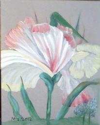 Blumen, Pflanzen, Studie, Blüte