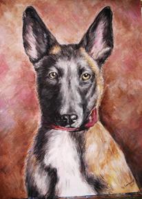 Malerei, Tiere, Hund,