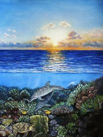 Riff, Meer, Natur, Sonnenuntergang