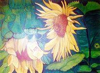 Blüte, Lebendig, Sonne, Licht und schatten