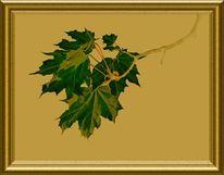 Zweig, Blätter, Äste, Grün