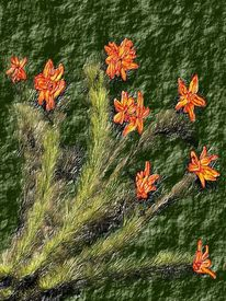 Blumen, Stängel, Orange, Stielen