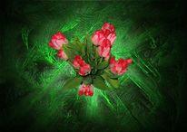 Grün, Blumen, Blumenstrauß, Tulpen