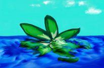 Spiegelung, Himmel, Wasser, Blätter