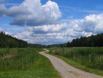 Landschaft, Weite, Weg, Wald