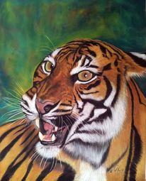 Katze, Braun, Pastellmalerei, Tiger