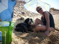 Tier und mensch, Algarve, Strand, Portugal