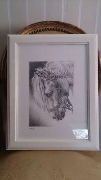 Porträtmalerei, Bleistiftzeichnung, Pferde, Sport