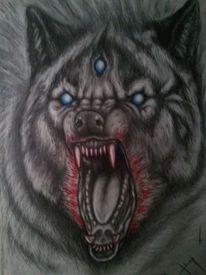 Wolf, Emotion, Bleistiftzeichnung, Zeichnung