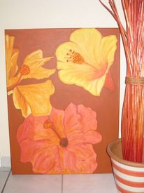 Hibiskus, Blumen, Garten, Paradies