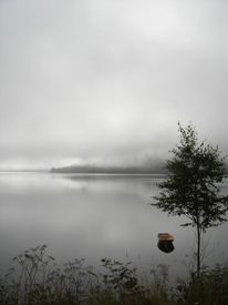 Fotografie, Reiseimpressionen, Nebel, Norwegen