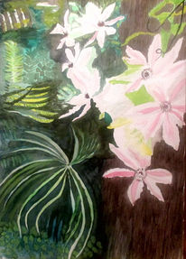 Blumen aquarell, Clematis, Blüte, Aquarell