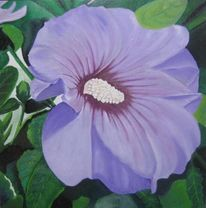 Hibiskus, Blüte, Lila, Ölmalerei