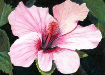 Hibiskusblüte, Acrylmalerei, Blumen, Hibiskus