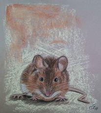 Maus, Braun, Pastellmalerei, Zeichnungen