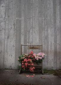 Trist, Deutsch, Willkommen, Blumentopf