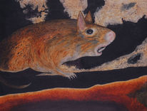 Ratte, Laborratte, Malerei