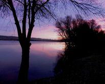 Winter, Teich, Landschaft, Gewässer