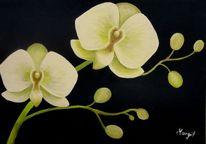 Natur, Pflanzen, Orchidee, Malerei