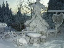 Baum, Natur, Schnee, Winter