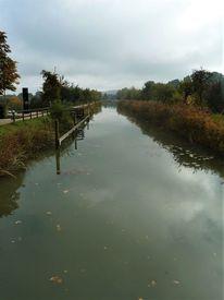 Ludwigskanal, Herbst, Landschaft, Baum