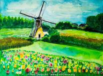 Windmühle, Niederlande, Mühle, Tulpen