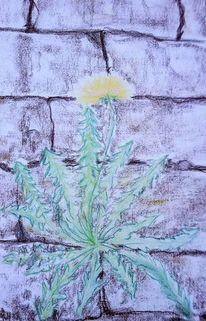 Löwenzahn, Strahlen, Blume standhaft, Pflanzen