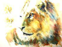 Tiere, Löwe, Mähne, Aquarellmalerei