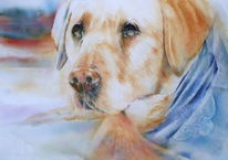 Henry, Aquarellmalerei, Hund, Dogs eyes