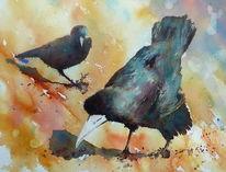 Vogel, Rabe, Krähe, Aquarellmalerei