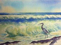 Meer, Aquarellmalerei, Ozean, Reiher