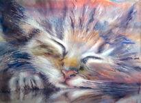 Gelassenheit, Katze, Aquarellmalerei, Aquarell