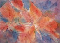Weihnachten, Aquarellmalerei, Poinsettia, Rot