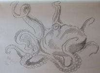 Skizze, Fantasie, Bleistiftzeichnung, Krake