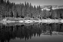 Caumasee, Wald, See, Herbst