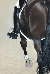 Pferde, Reiter, Reiterstiefel, Zeichnungen