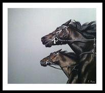 Pferde, Zeichnungen, Schuss