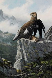 Schweiz, Adler