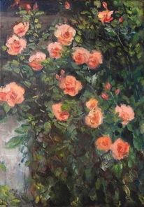 Rose, Impressionismus, Blumen, Malerei