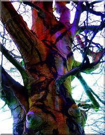 Farben, Traum, Natur, Fantasie