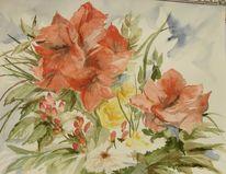 Blumen, Amaryllis, Aquarell
