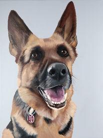 Gemälde, Porträtmalerei, Arbeit, Hundeportrait