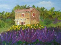 Haus, Lavendel, Himmel, Provence