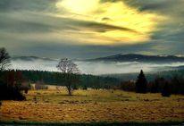 Berge, Ruhe, Wald, Einsammkheit