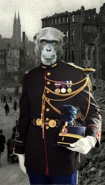 Krieg, Menschen, Nouveau, Affe