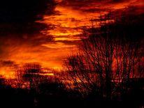 Baum, Himmel, Sonne, Abendrot